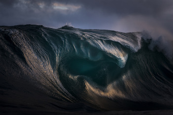 Ray Collins / Oil / Juror's Award